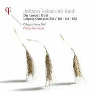 Bach: Leipzig Cantatas BWV 101, BWV 103 & BWV 115