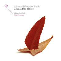 Bach: Motetten, BWV 225-230