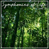 Symphonies of Life, Vol. 56 - Busoni: Turandot