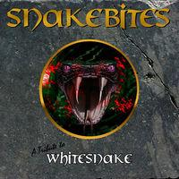 A Tribute to Whitesnake