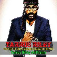 The Best of Shashamane Reggae Dubplates (Tarrus Riley Anthems)