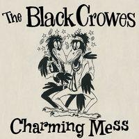 Charming Mess