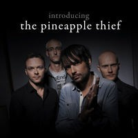 Introducing... The Pineapple Thief
