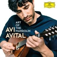 Vivaldi: Concerto for 2 Mandolins in G Major, RV 532: III. Allegro