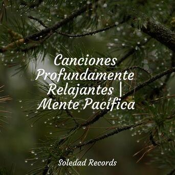 Canciones Profundamente Relajantes | Mente Pacífica