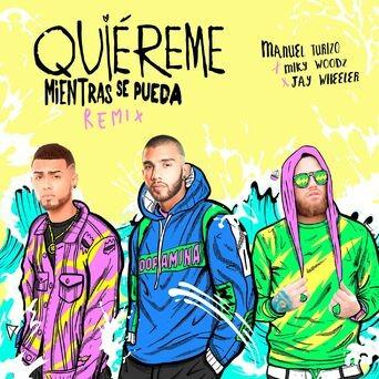 Quiereme Mientras se Pueda (Remix)