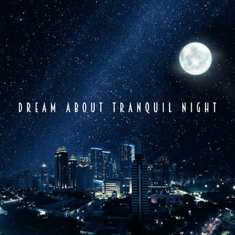 Dream About Tranquil Night: New Age for Sleep, Relaxing & Calming Sounds, Stress Relief