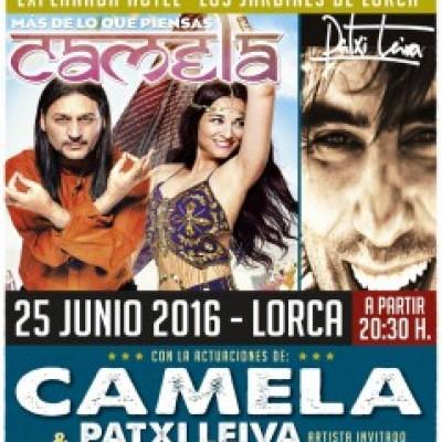 Camela en Lorca (Murcia)